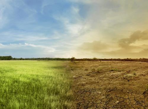 Miljø og klima